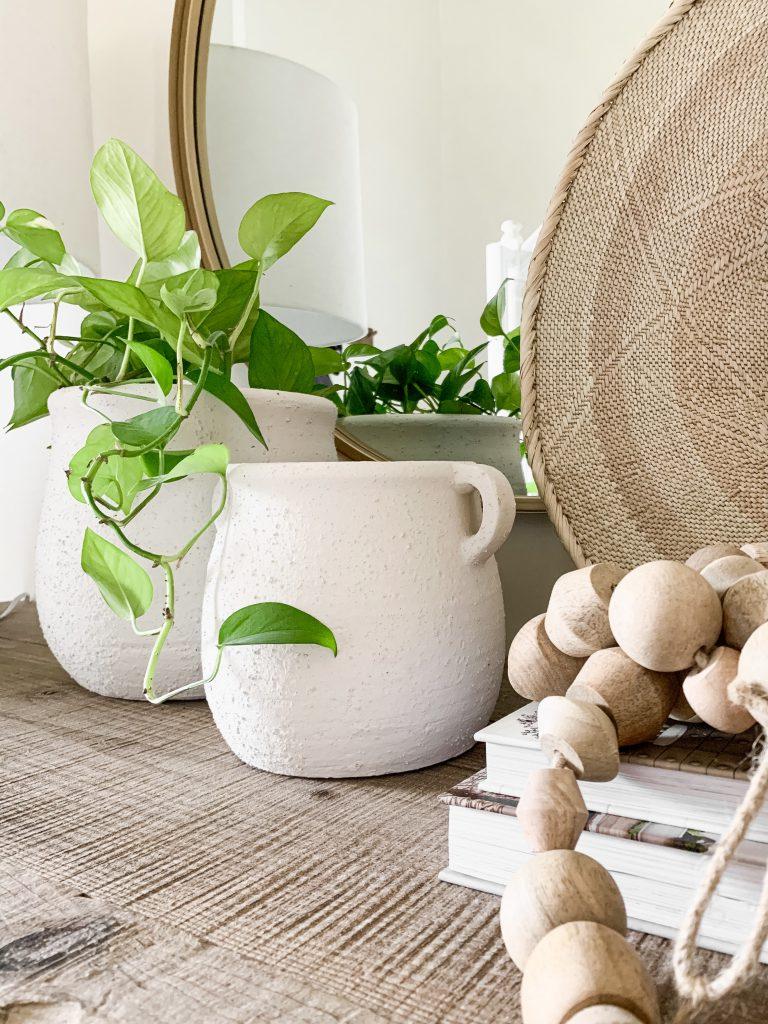 white concrete pots with plant